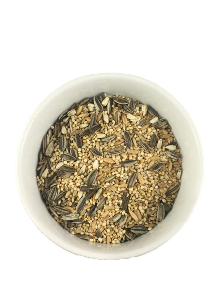 Small Parrot Seed 2kg