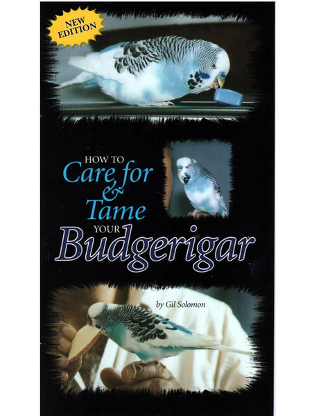 How to Care for & Tame Your Budgerigar