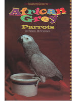 Complete Guide to African Grey Parrots