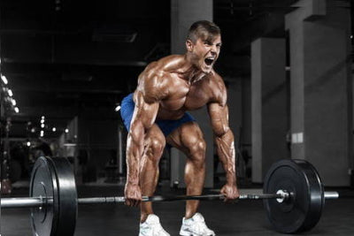 Is Creatine Monohydrate Beneficial
