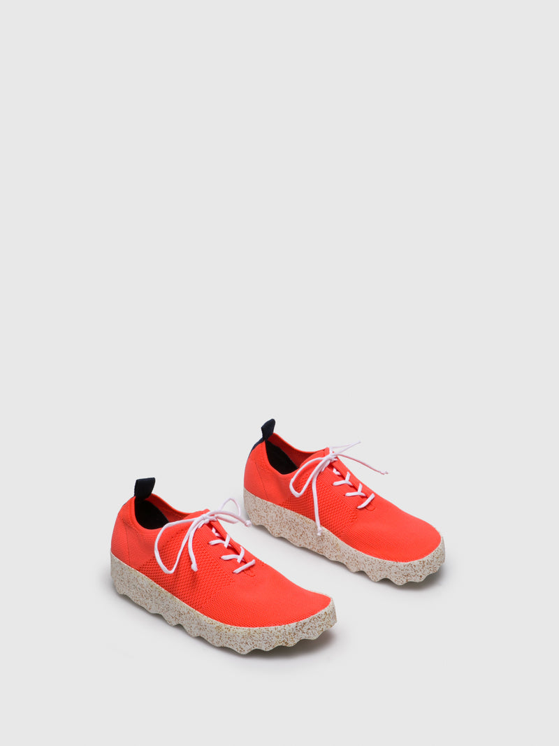 Coral Lace-up Trainers