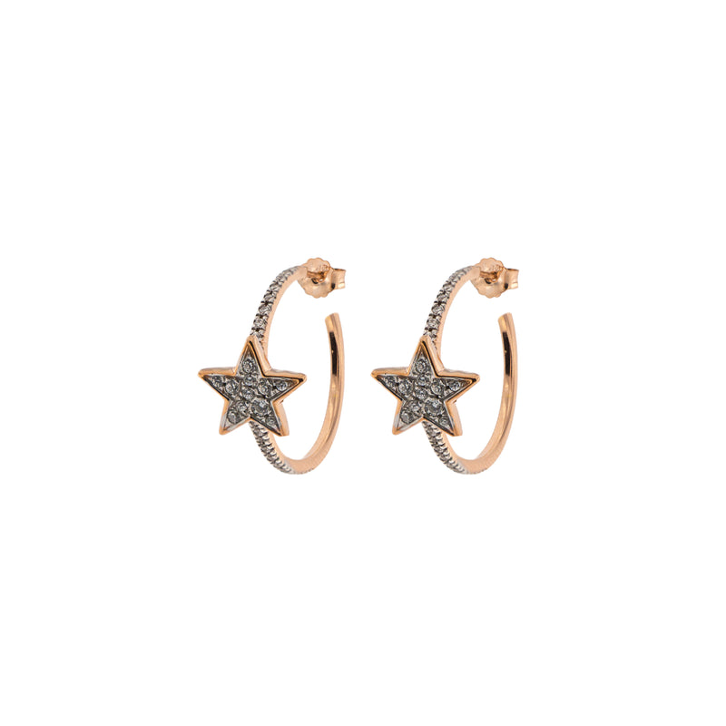 Zircon Circle Earrings - Star