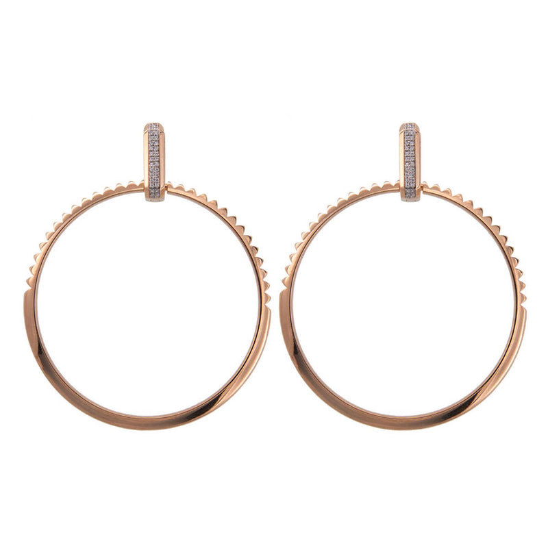 Earrings Big Bold Hoops