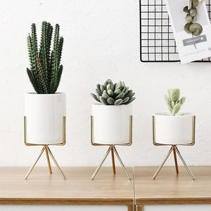Ceramic Vases With Iron Stand