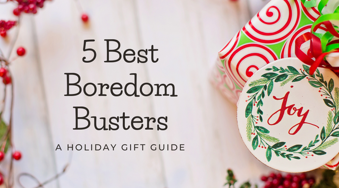 5 Best Boredom Busters: A Holiday Gift Guide