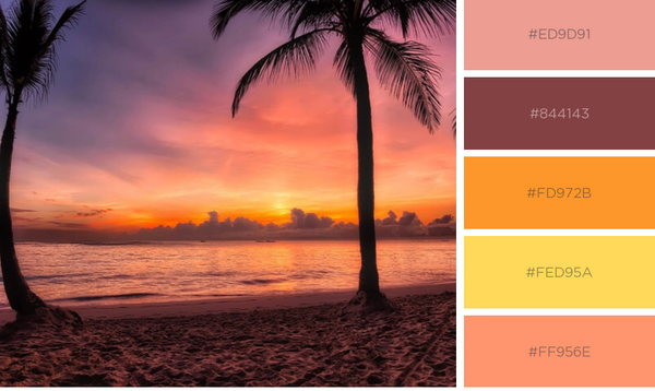 Palm tree with coral and purple sunset