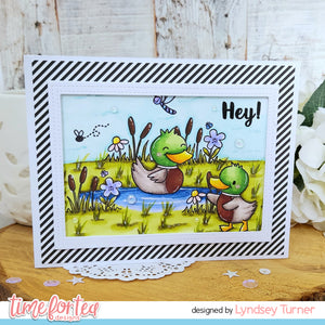 Lucky Ducks Stamp and Die Collection