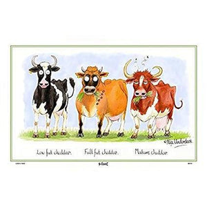 SAMUEL & LAMONT : Cheddar Cows Linen Union Tea Towel