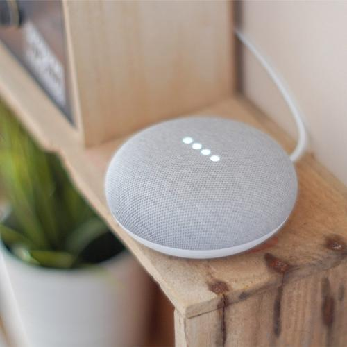 GOOGLE : Nest Mini Chalk