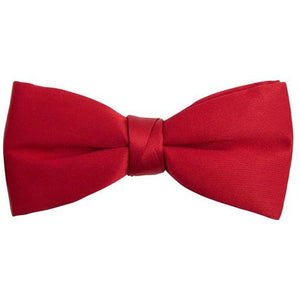 ZAZZI :  Silk Red Bow Tie