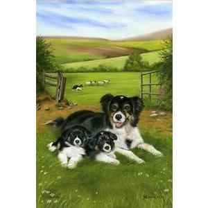 SAMUEL & LAMONT : Linen Union Tea Towel Sheep Dog & Pup
