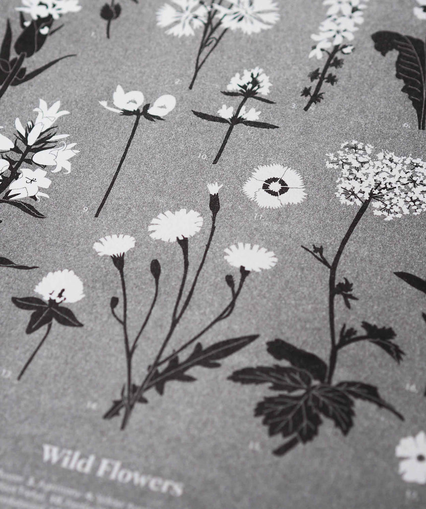 Wild Flowers - The Collective Press