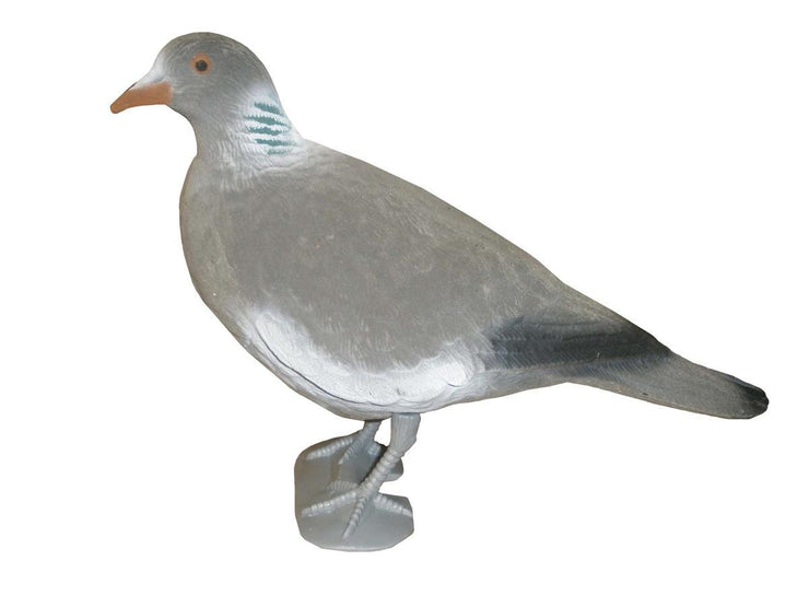 Flocked Head Up Pigeon With Legs