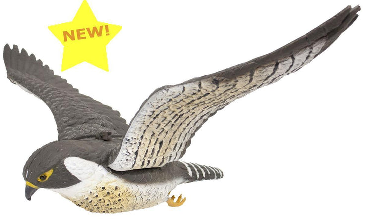 FL7625 Flying Peregrine Falcon