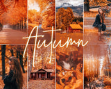 ALL SEASONS PACK PACKS 21presets®