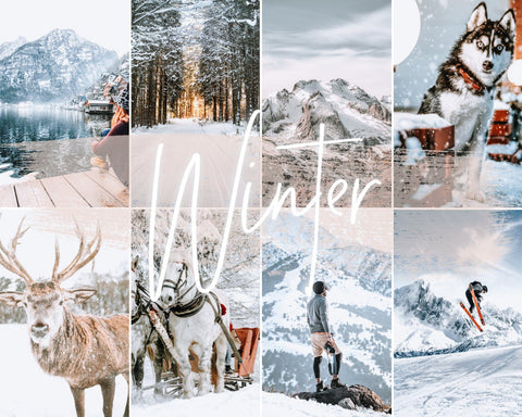 *new* WINTER - 21presets®