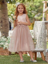 Fancy Long A-Line Tulle Flower Girl Dress With Appliques-Blush 3