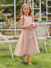 Fancy Long A-Line Tulle Flower Girl Dress With Appliques-Blush 1