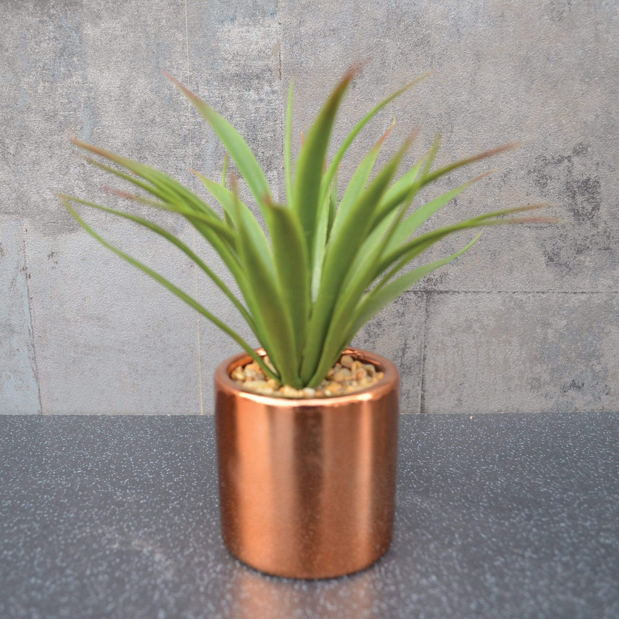 Candlelight Home Artificial Plants & Flowers Aloe Vera Artificial Plant in Pot Copper 17cm 12PK