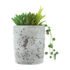 Candlelight Home Artificial Plants & Flowers Mixed Succulents Green in Distressed Cement Pot 16cm 6PK
