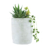 Candlelight Home Artificial Plants & Flowers Mixed Succulents Green in Textured Cement Pot 15cm 6PK