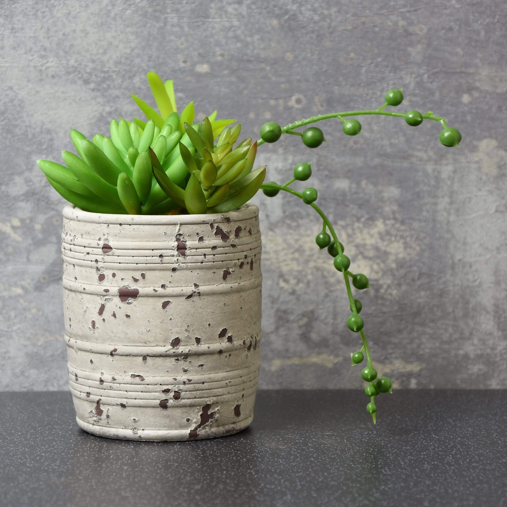 Candlelight Home Artificial Plants & Flowers Mixed Succulents in Distressed Cement Pot Green 16cm 6PK
