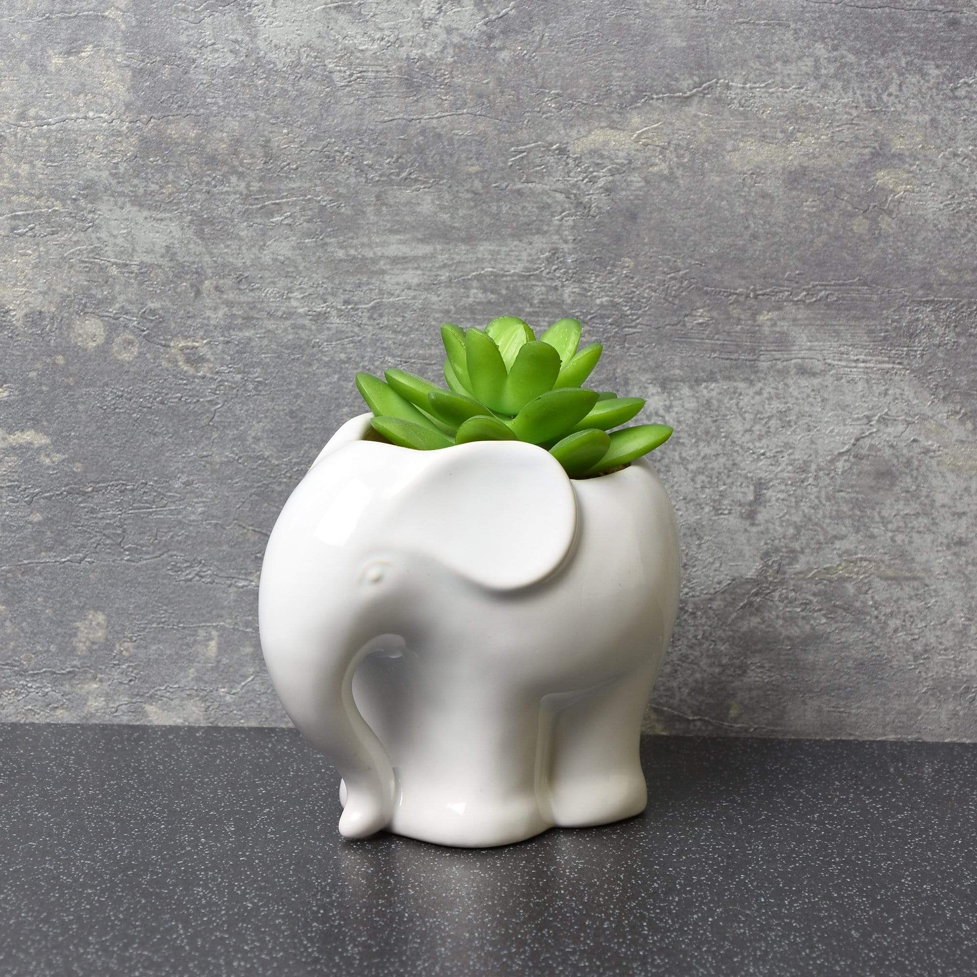 Candlelight Home Artificial Plants & Flowers Plastic Succulent Plant In Ceramic Elephant Pot White 12.5cm 6PK