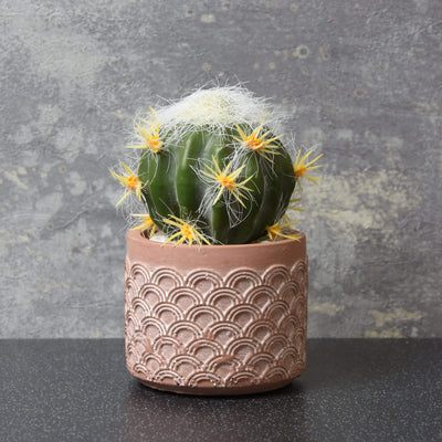 Candlelight Home Artificial Plants & Flowers Round Cactus with Yellow Flowers in Scalloped Pot Red 13cm 12PK