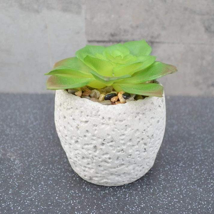 Candlelight Home Artificial Plants & Flowers Succulent in Round Cement Pot Grey 10cm 6PK