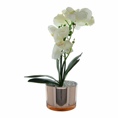 Candlelight Home Artificial Plants & Flowers The Flower Patch Cream Orchid in Glass Pot 40cm 4PK