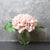 Candlelight Home Artificial Plants & Flowers The Flower Patch Hydrangea Dusky Pink in Glass Vase 20cm 6PK