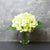 Candlelight Home Artificial Plants & Flowers The Flower Patch Hydrangea Green in Glass Vase 20cm 6PK