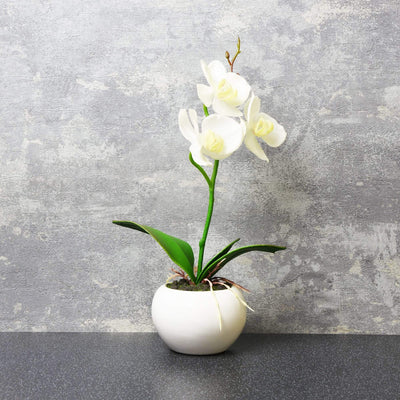 Candlelight Home Artificial Plants & Flowers The Flower Patch Orchid White in Ceramic Pot 26cm 6PK