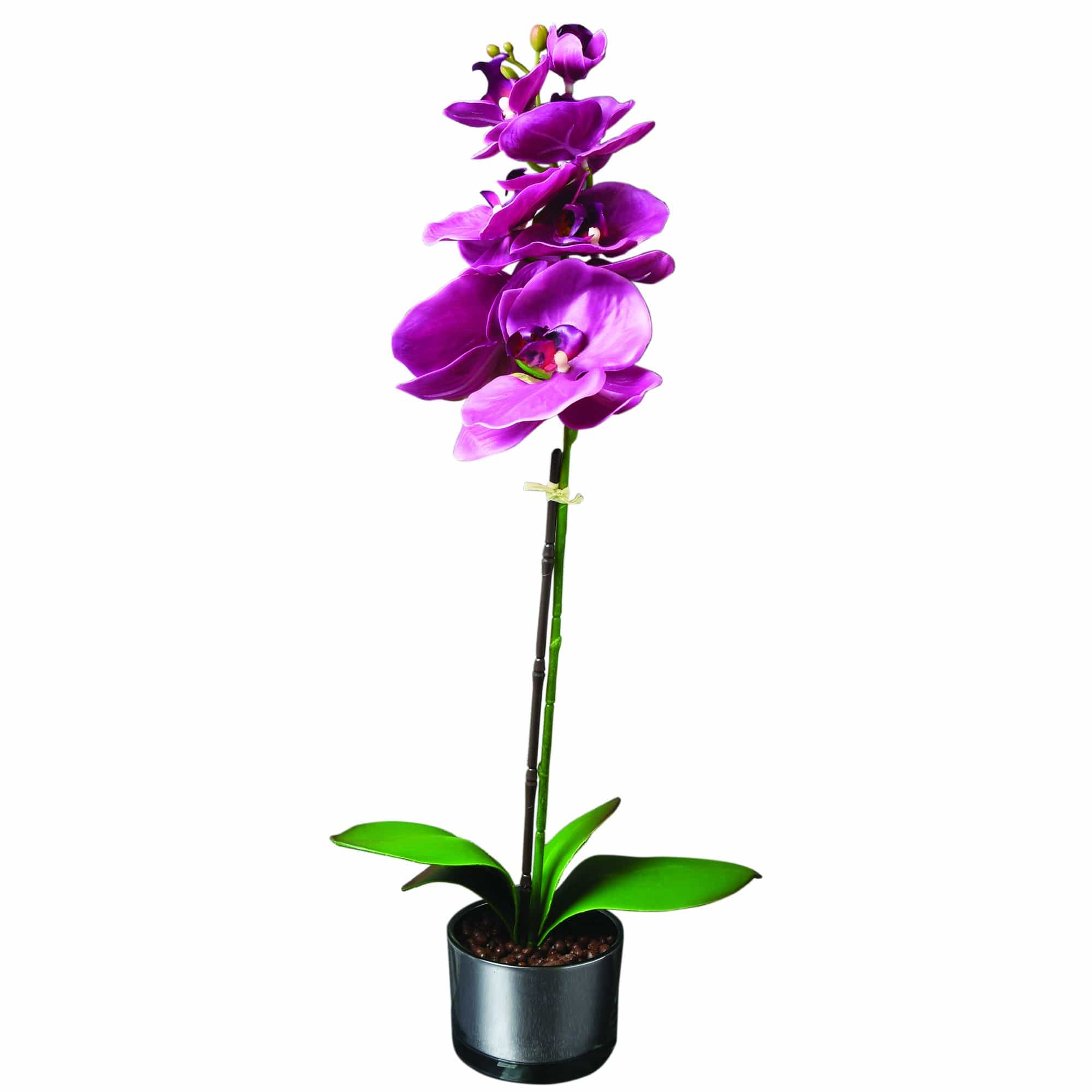 Candlelight Home Artificial Plants & Flowers The Flower Patch Purple Orchid in Glass Pot 48cm 4PK