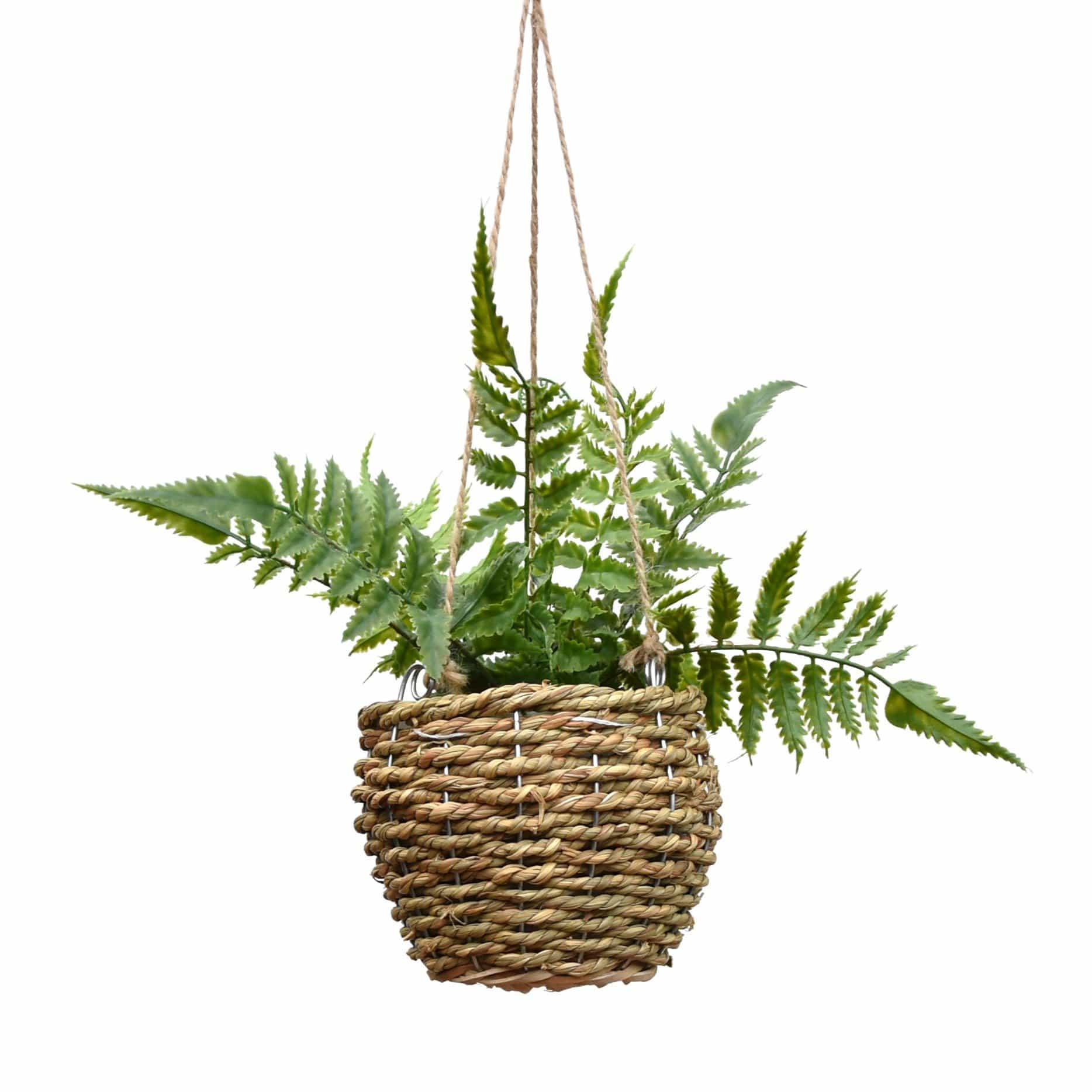 Faux Hanging Fern in Rattan Basket in Gift Box 40cm 1PK
