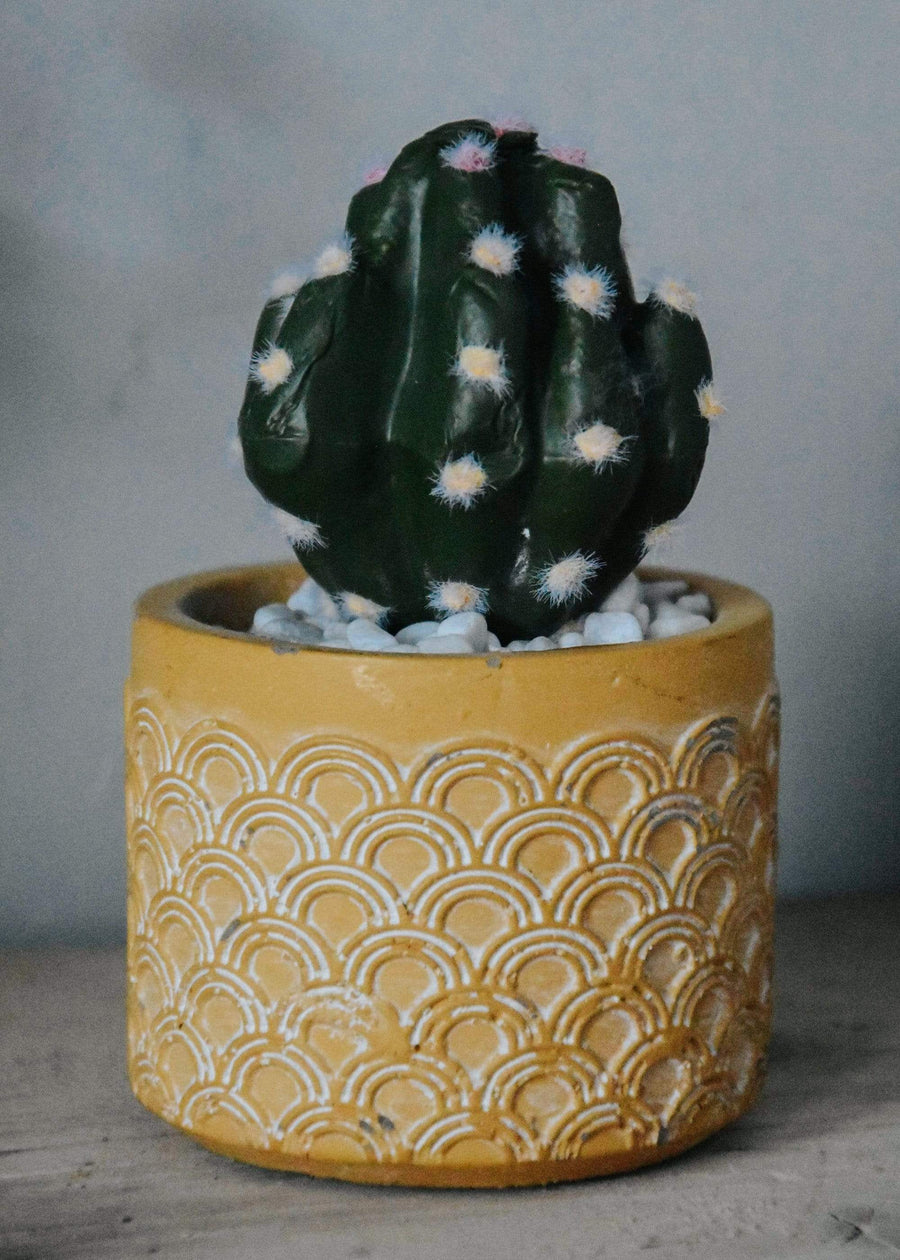 ESME Homeware Artificial Plants Round Cactus in Cement Pot Yellow