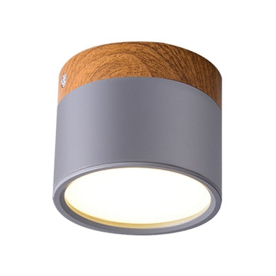 LED Ceiling Lights Modern Nordic Iron Ceiling Lamp