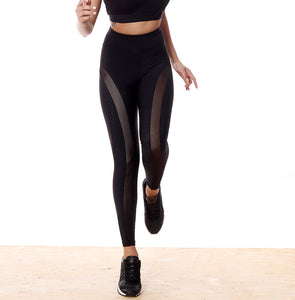 DROMEAS LEGGINGS ****WEB-ONLY****