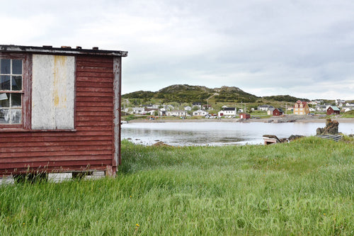 Red fishing shack in Newfoundland print