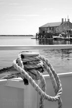 Cape Cod black and white knotted rope print