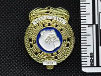 AFOSI Fraud Dawg Badge Lapel Pin