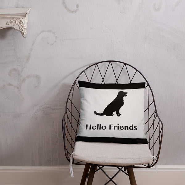 Hello Friends Beyond This Point Pillow