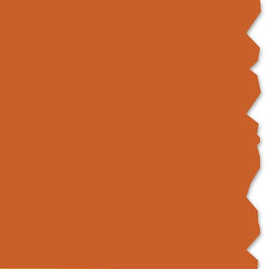 "TT230SM Orange 4"" Continuous Vinyl Roll<br>(HT 558-00411)"