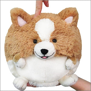 Mini Squishable Corgi