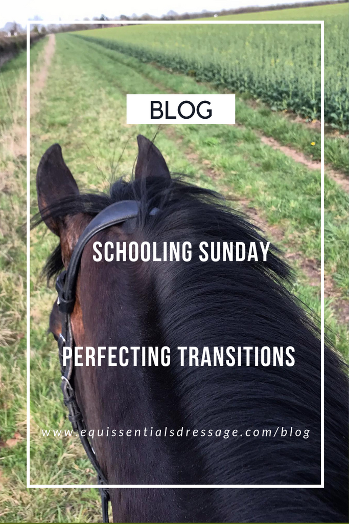 Schooling Sunday - Perfecting the transitions