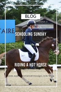 Schooling Sunday - Riding a hotter horse in the walk & trot