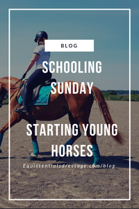 Schooling Sunday - Starting Young Horses