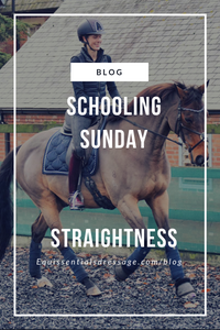 Schooling Sunday - Our New Feature!