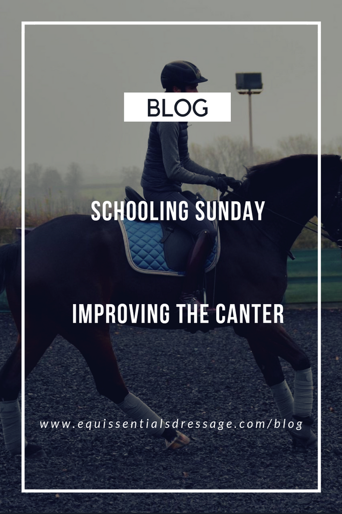 Schooling Sunday - Improving the canter
