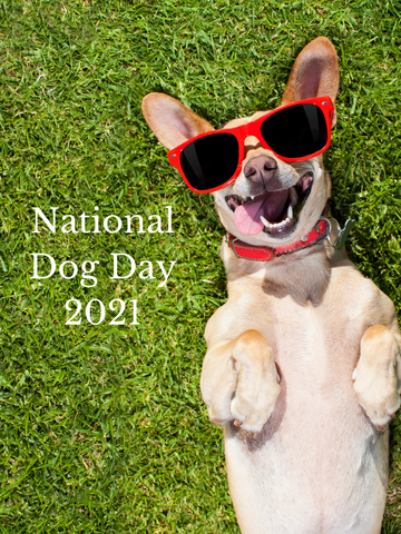 Observing NATIONAL DOG DAY [2021 STYLE]